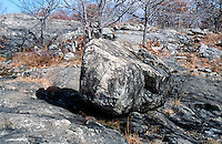 GLACIAL EROSION<br /> Pegmatic Glacial Erratic Or Wanderer<br /> Large boulders carried and left behind by the melting ice. Often they consist of rock types found hundreds of miles from where they come to rest.