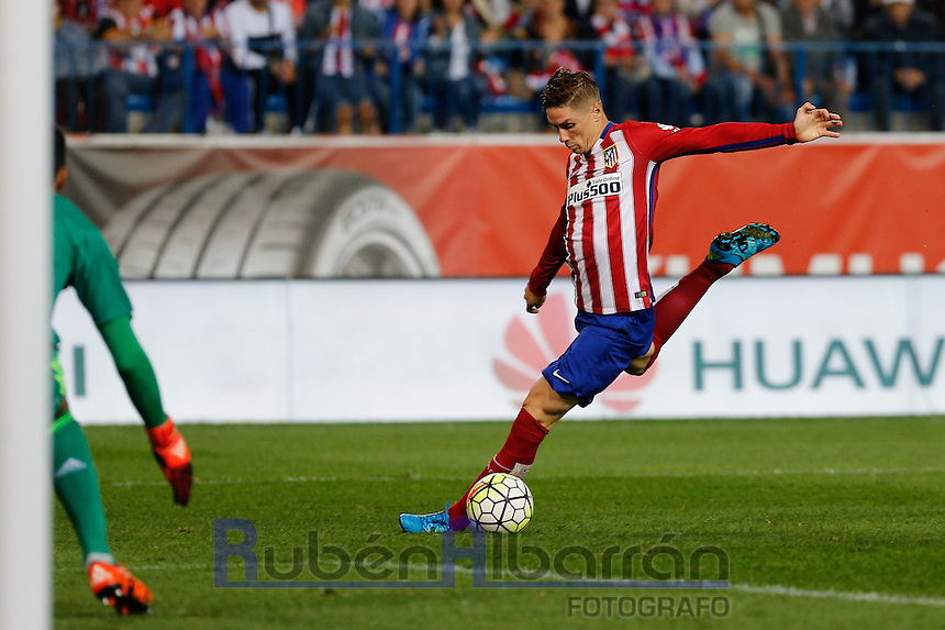 Atletico Madrid´s Spanish forward Fernando Torres in action