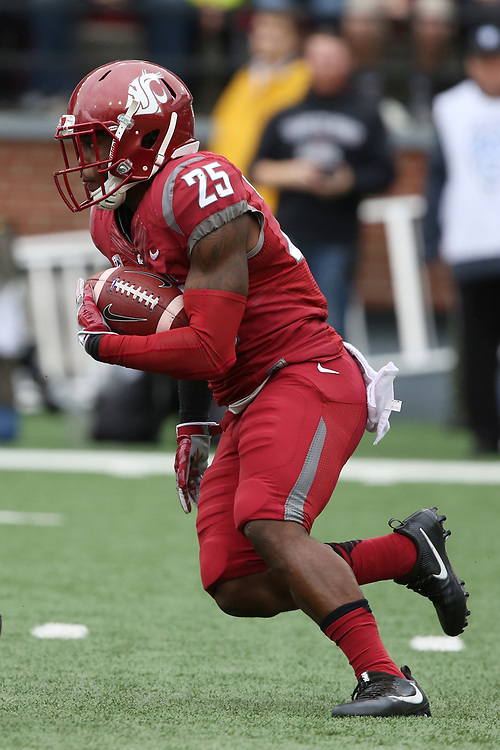 Jamal Morrow, Washington State University running back, looks for a hole during the Cougars non-conference game against their neighbors from the University of Idaho on September 17, 2016.   The Cougs defeated the Vandals at Martin Stadium, 56-6.