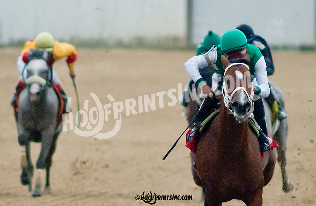 Lucky Sand winning at Delaware Park on 9/21/13