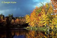 AU09-009z  Forest - autumn, pond
