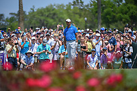 Tiger Woods (USA) looks over his tee shot on 3 during round 1 of The Players Championship, TPC Sawgrass, at Ponte Vedra, Florida, USA. 5/10/2018.<br /> Picture: Golffile | Ken Murray<br /> <br /> <br /> All photo usage must carry mandatory copyright credit (&copy; Golffile | Ken Murray)