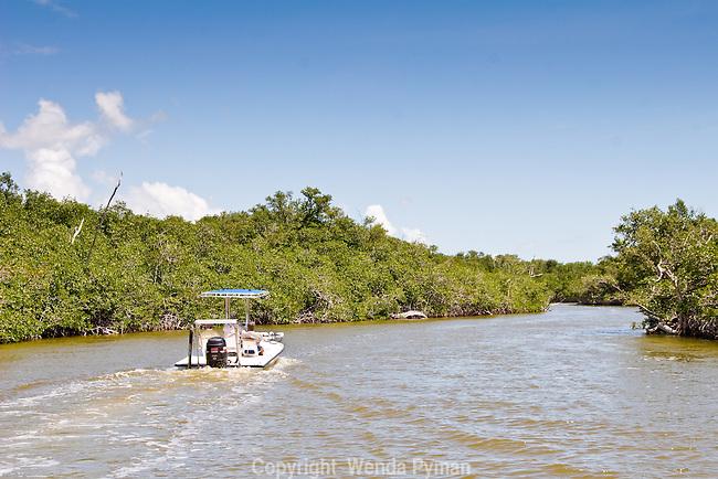 Tarpon Creek, a brackish waterway, is a  seldom fished  creek.