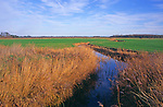 A293JF Drainage ditch on land below sea level Butley marshes Suffolk England