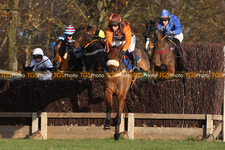 Otage de Brion ridden by Sam Whaley-Cohen (C) in jumping action during the New Year's Day Racing at Fakenham Handicap Chase at Fakenham Racecourse, Norfolk - 12/12/11 - MANDATORY CREDIT: Gavin Ellis/TGSPHOTO - Self billing applies where appropriate - 0845 094 6026 - contact@tgsphoto.co.uk - NO UNPAID USE.