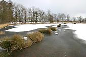 Appelscha, 27 febr. 2005. Nationaal Park Drents-Friese Wold (National Parc).