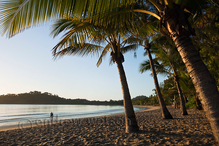 View along Kewarra Beach at dawn.  Cairns, Queensland, Australia