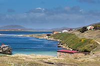 The Falkand Islands