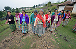 Women walk together in San Luis, a small Mam-speaking Maya village in Comitancillo, Guatemala. Women in the community have organized to work together on several agricultural and animal raising projects, with help from the Maya Mam Association for Investigation and Development (AMMID).