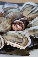 Europe/France/Languedoc-Roussillon/66/Pyrénées-Orientales/Perpignan: Huîtres et coquillages de l'étang de Leucate  Brasserie: La 7e Vague