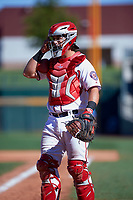 Mesa Solar Sox catcher Taylor Gushue (75), of the Washington Nationals organization, during an Arizona Fall League game against the Scottsdale Scorpions on October 24, 2017 at Sloan Park in Mesa, Arizona. The Scorpions defeated the Solar Sox 3-1. (Zachary Lucy/Four Seam Images)