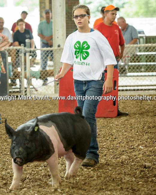 Elise Sanny, shows one of the Sanny family hogs at the Polk County Fair.