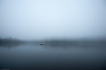 Reflecting trees in a lagoon in a foggy landscape with a small boat in the distance