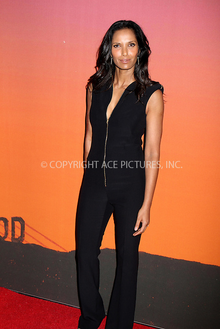 WWW.ACEPIXS.COM<br /> <br /> October 23, 2013 in New York City<br /> <br /> Padma Lakshmi arrives at the 2013 Whitney Gala and Studio Party at Skylight at Moynihan Station on October 23, 2013 in New York City.<br /> <br /> By Line: Nancy Rivera/ACE Pictures<br /> <br /> <br /> ACE Pictures, Inc.<br /> tel: 646 769 0430<br /> Email: info@acepixs.com<br /> www.acepixs.com
