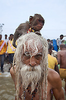 "India. Uttar Pradesh state. Allahabad. Maha Kumbh Mela. Royal bath on Basant Panchami Snan (fifth day of the new moon). The ritual ""Royal Bath"" is timed to match an auspicious planetary alignment, when believers say spiritual energy flows to earth. An old Naga (naked) Sadhu takes a dip with his monkey at Sangam and worships the river Ganges. The Kumbh Mela, believed to be the largest religious gathering is held every 12 years on the banks of the 'Sangam'- the confluence of the holy rivers Ganga, Yamuna and the mythical Saraswati. In 2013, it is estimated that nearly 80 million devotees took a bath in the water of the holy river Ganges. The belief is that bathing and taking a holy dip will wash and free one from all the past sins, get salvation and paves the way for Moksha (meaning liberation from the cycle of Life, Death and Rebirth). Bathing in the holy waters of Ganga is believed to be most auspicious at the time of Kumbh Mela, because the water is charged with positive healing effects and enhanced with electromagnetic radiations of the Sun, Moon and Jupiter. In Hinduism, Sadhu (good; good man, holy man) denotes an ascetic, wandering monk. Sadhus are sanyasi, or renunciates, who have left behind all material attachments. They are renouncers who have chosen to live a life apart from or on the edges of society in order to focus on their own spiritual practice. The significance of nakedness is that they will not have any worldly ties to material belongings, even something as simple as clothes. A Sadhu is usually referred to as Baba by common people. The Maha (great) Kumbh Mela, which comes after 12 Purna Kumbh Mela, or 144 years, is always held at Allahabad. Uttar Pradesh (abbreviated U.P.) is a state located in northern India. 15.02.13 © 2013 Didier Ruef"