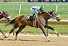 Exclusive Warrior winning at Delaware Park on 5/31/12
