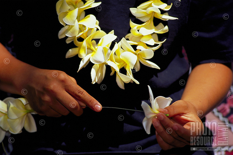 Lei maker stringing plumeria flowers