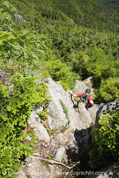 Hiker descending the Sphinx Trail in Thompson and Meserve's Purchase in the New Hampshire White Mountains during the summer months. This trail, connecting the Great Gulf Trail and the Gulfside Trail, is a rough and rocky trail.