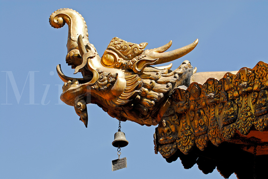 Head of makara, a mythical sea dragon combining characters of elephant, crocodile and snake, acts as protector on the roof of the Jokhang Temple, Lhasa, Tibet, China.