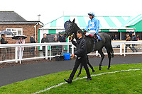 Winner of The S H Jones Wines Handicap Maid of Spirit ridden by Adam Kirby and trained by Clive Cox is led into the Winner's enclosure during Horse Racing at Salisbury Racecourse on 14th August 2019