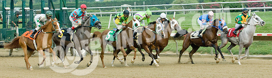 Vaavaa Voom winning at Delaware Park on 8/21/10