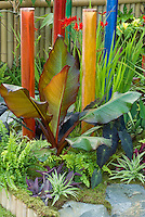 Mix of tender and perennial plants: tropical ornamental Ensete ventricosum Maurelii, Tradescantia, Colocasia black leaved, ferns, perennial Crocosmia Lucifer,  with pretty colorful poles ornaments in garden raised bed scene view with stones, moss, fence