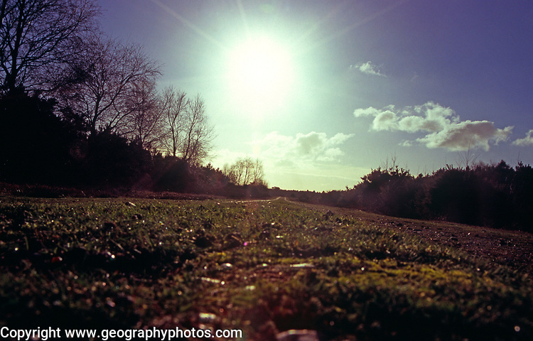 A293KD Bright sunshine lens flare from ground level looking down footpath. Image shot 01/2006. Exact date unknown.