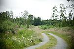 Ireland - Woodlands, Flora, Fauna + Old Rural Buildings