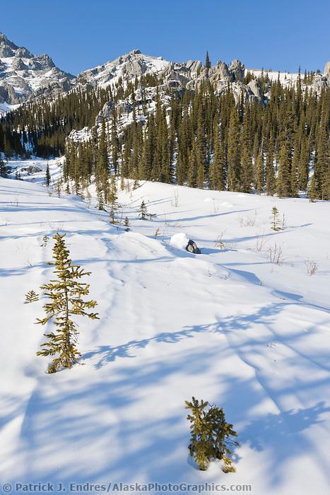 White Mountains National Recreation Area, interior, Alaska