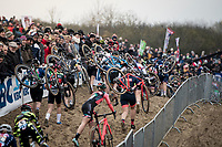 Women's Race<br /> UCI cyclocross WorldCup - Koksijde (Belgium)<br /> <br /> ©kramon