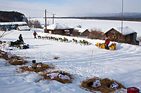 Mitch Seavey leaves the village checkpoint of Ruby where he'll travel down the Yukon River during the 2010 Iditarod