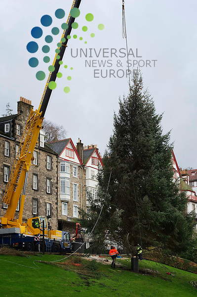 This Christmas tree is gifted by Norway as a thank you for help recieved from Edinburgh and Scotland during WWII. The tree is supplied from Keilder Forest in England and has been for the previous five years. In the twenty years previous to that the tree was shipped from Norway but now a local tree is used to reduce the carbon footprint and reduce costs. The tree though is still paid for by Norway..A premanent concrete base is in place and the tree is fitted into a metal sleave to hold it in position and is aditionally supported by cables as the location of the tree on the Mound is quite windy. It is due to be decorated over the next couple of days ; Edinburgh, Scotland. 9th November 2010...Picture:Scott Taylor Universal News And Sport (Europe) .All pictures must be credited to www.universalnewsandsport.com. (Office)0844 884 51 22.