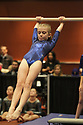 2017 Gymnastics Meet Season