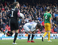 Blackburn Rovers' Danny Graham reacts after his second half goal was disallowed by Referee Oliver Langford <br /> <br /> Photographer Rich Linley/CameraSport<br /> <br /> The EFL Sky Bet Championship - Blackburn Rovers v Preston North End - Saturday 9th March 2019 - Ewood Park - Blackburn<br /> <br /> World Copyright © 2019 CameraSport. All rights reserved. 43 Linden Ave. Countesthorpe. Leicester. England. LE8 5PG - Tel: +44 (0) 116 277 4147 - admin@camerasport.com - www.camerasport.com