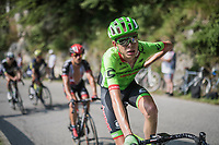 Hugh Carthy (GBR/Cannondale-Drapac) up the Foza climb (1086m)<br /> <br /> Stage 20: Pordenone › Asiago (190km)<br /> 100th Giro d'Italia 2017