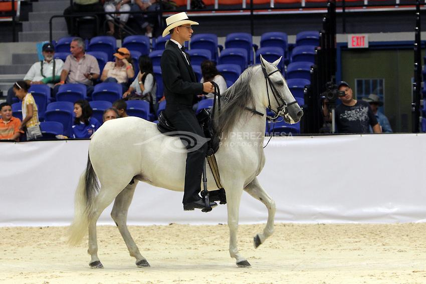 Gabriel Arias Berrios ganador del Campeonato de Jinetes Juveniles Aficionados de la Copa Centroamericna y del Caribe de Equitacion, Paso Fino y Andadura.