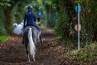 USA-Elisabeth Halliday-Sharp rides Flash Cooley back from the arena inspection for the CCI3*-L7YO. 2019 FRA-Mondial du Lion - FEI World Breeding Championships. Le Lion d'Angers. France. Thursday 17 October. Copyright Photo: Libby Law Photography