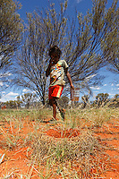 An Aborigine child in front of a nest of mulgo ants who clearly mark their presence by surrounding the entrance to their nest with a wall of branch and leaves, which resembles a modern sculpture. Quite the reverse, the entrances built by Melophotus bogati honey ants are very discreet; we rarely observe rows of warriors or worker ants outside the nest or on a gathering expedition except, and this rarely, in the morning.///Un enfant aborigène devant un nid de fourmis mulgo qui marquent fortement leur présence par une enceinte de branche et de feuille autour de l'entrée du nid qui ressemble à une sculpture moderne. Au contraire, les entrées des fourmis à miel Melophotus bogati sont très discrètes l'on observe rarement des rangées de guerrières ou de travailleuses à l'extérieur du nid ou en expédition de récolte à part rarement le matin très tôt.