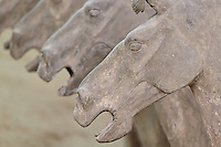 Horse figures, Museum of Qin Terra Cotta Warriors and Horses, considered to be the most significant archaeological excavations of the 20th century, Xian, Lintong County, Shaanxi Province, China