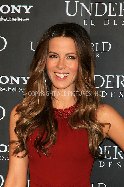 WWW.ACEPIXS.COM . . . . .  ..... . . . . US SALES ONLY . . . . .....January 25 2012, Madrid....Actress Kate Beckinsale at the 'Underworld Awakening'  photocall at Villamagna Hotel on January 25, 2012 in Madrid, Spain.....Please byline: FD/ACE Pictures, Inc.... . . . .  ....Ace Pictures, Inc:  ..Tel: (212) 243-8787..e-mail: info@acepixs.com..web: http://www.acepixs.com