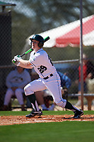 Dartmouth Big Green third baseman Steffen Torgersen (29) at bat during a game against the Iowa Hawkeyes on February 27, 2016 at South Charlotte Regional Park in Punta Gorda, Florida.  Iowa defeated Dartmouth 4-1.  (Mike Janes/Four Seam Images)