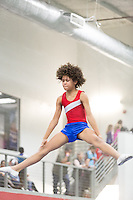 American Gymnastics Academy - Mardi Gras 2015