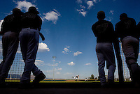 spt-basebalance0424 158450--  Members of the Desert Ridge baseball team watch as teammates bat against Horizon Wednesday, April 22, 2009. (Pat Shannahan/ The Arizona Republic)