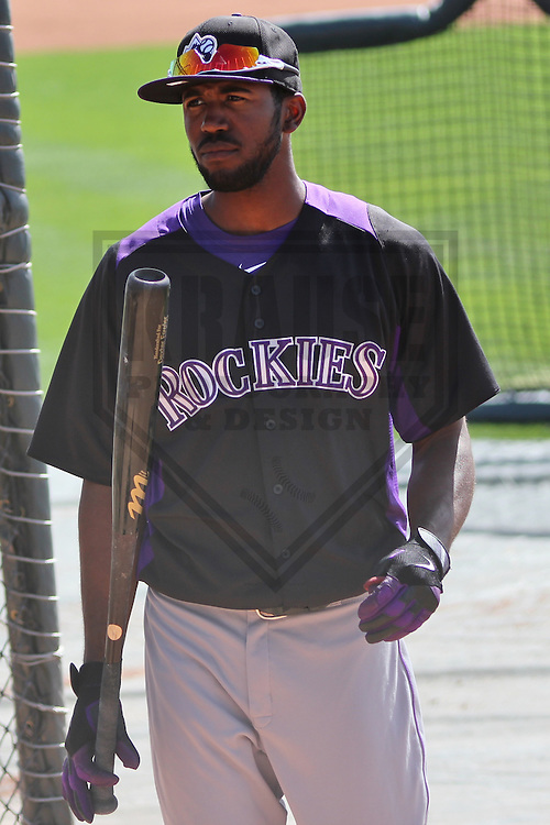 SCOTTSDALE - March 2013: Dexter Fowler (24)  of the Colorado Rockies during a Spring Training workout on March 19, 2013 at Salt River Fields in Scottsdale, Arizona.  (Photo by Brad Krause). .