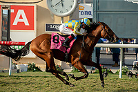 DEL MAR, CA  SEPTEMBER 2:  #8 Ride a Comet, ridden by Drayden Van Dyke wins the  Del Mar Derby (Grade ll) on September 2, 2018 at Del Mar Thoroughbred Club in Del Mar, CA.(Photo by Casey Phillips/Eclipse Sportswire/Getty ImagesGetty Images