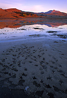 Bird tracks are left in the soft mud at Swan Lake Flats with Electric Peak in the distance at sunrise, Yellowstone National Park, Wyoming