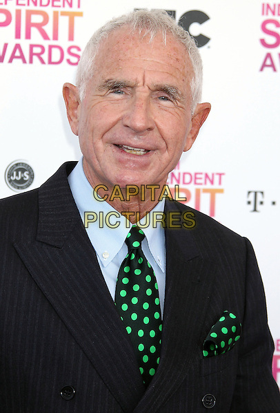 Fredric Von Anhalt.2013 Film Independent Spirit Awards - Arrivals Held At Santa Monica Beach, Santa Monica, California, USA,.23rd February 2013..indy indie indies indys portrait headshot green black polka dot tie blue shirt .CAP/ADM/RE.©Russ Elliot/AdMedia/Capital Pictures