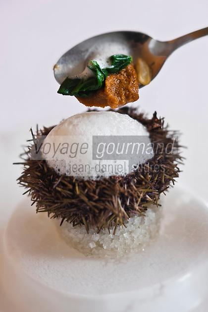 Europe/France/Bretagne/35/ Ille et Vilaine/ Noyal-sur-Vilaine: Oursin Coco, Ecume de Coco de Paimpol, Recette de Sylvain Guillemot  de l' Auberge du Pont d'Acign