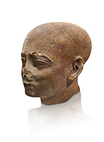Ancient Egyptian statue shaved head of a priest, New Kingdom, 18th Dynasty, (1390-1353 BC). Egyptian Museum, Turin. Drovetti collection. Cat 3141. white background.