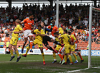 \chaos in the Fleetwood Town area as Blackpool attack<br /> <br /> Photographer Stephen White/CameraSport<br /> <br /> The EFL Sky Bet League One - Blackpool v Fleetwood Town - Monday 22nd April 2019 - Bloomfield Road - Blackpool<br /> <br /> World Copyright © 2019 CameraSport. All rights reserved. 43 Linden Ave. Countesthorpe. Leicester. England. LE8 5PG - Tel: +44 (0) 116 277 4147 - admin@camerasport.com - www.camerasport.com